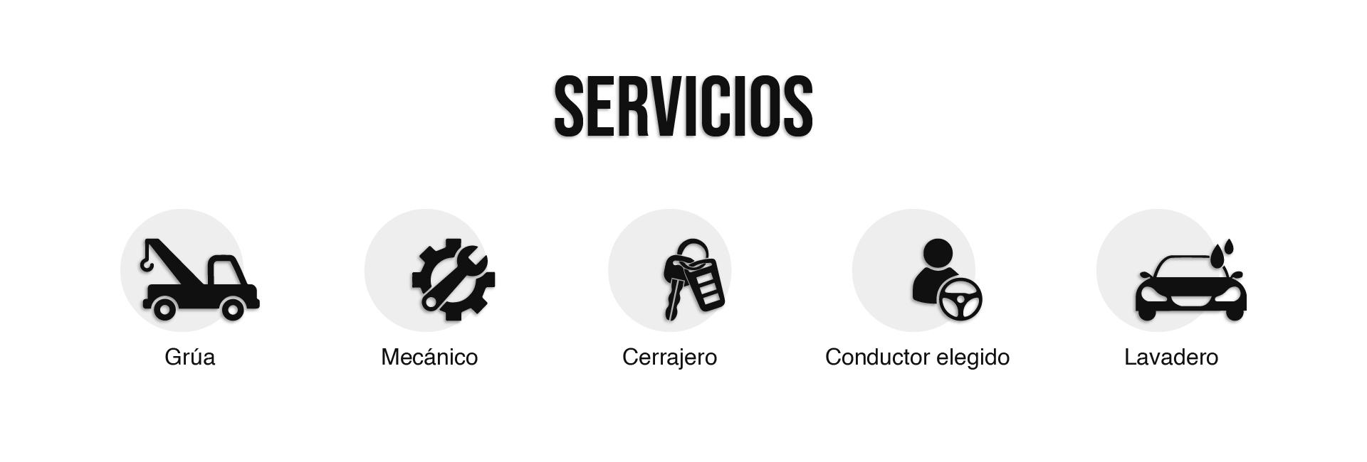 Seccion Servicios